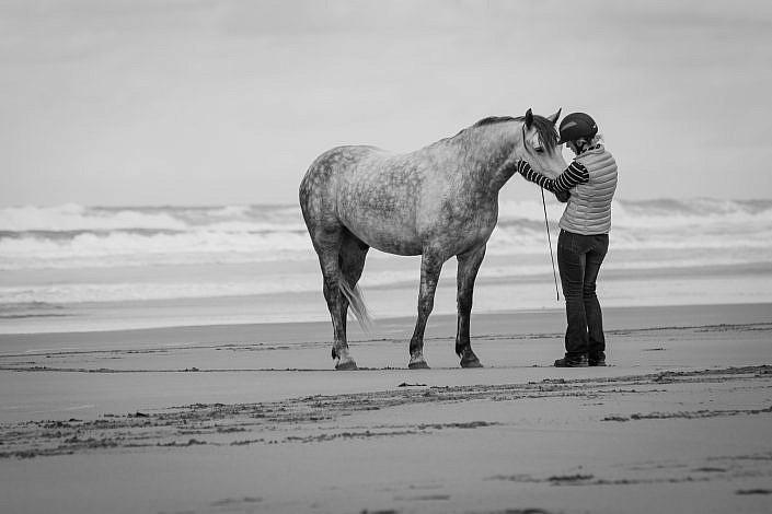 Horse Photography | Fine art horse photography